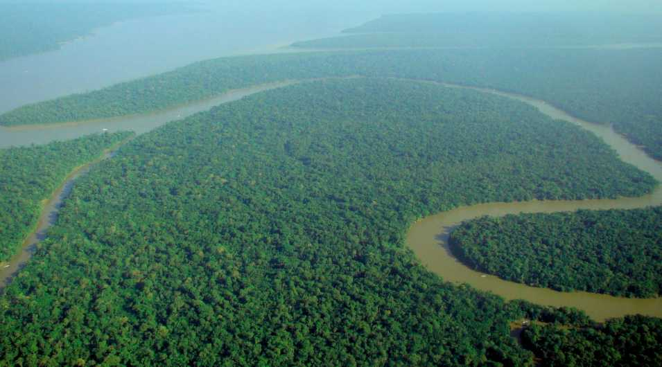 Amazonas By: Wikipedia